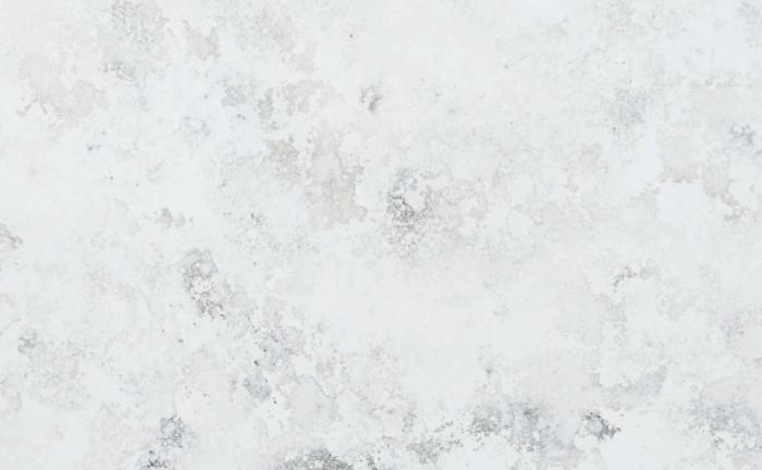 Arenastone Bianco Fiorito – close up of texture